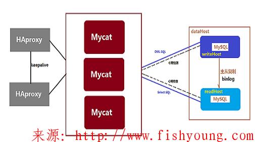 Linux+Mysql多实例主从复制+Mycat读写分离(实战总结)